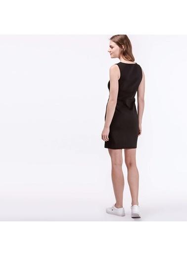 Kolsuz Kalem Elbise-Lacoste
